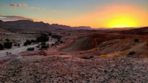Sunset_in_the_Negev_Desert_near_Yeruham_Israel-635x357